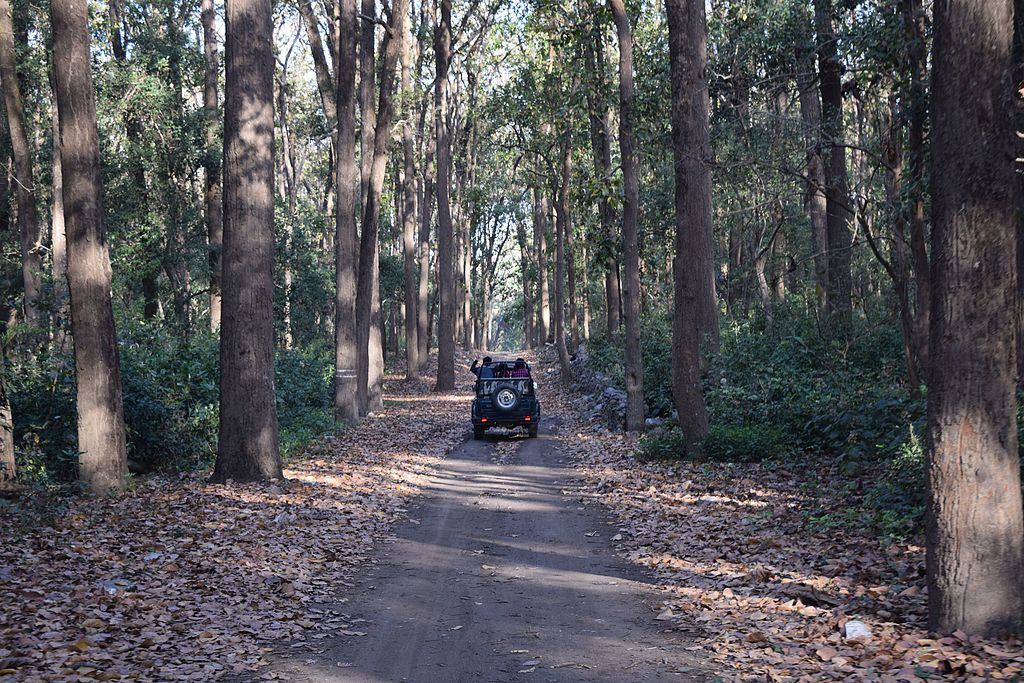 jeep safari in uttarakhand