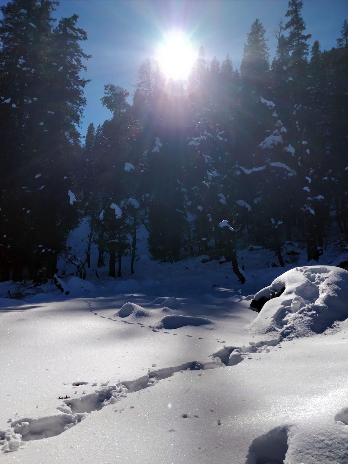 single trail on snow at kedarkantha trek