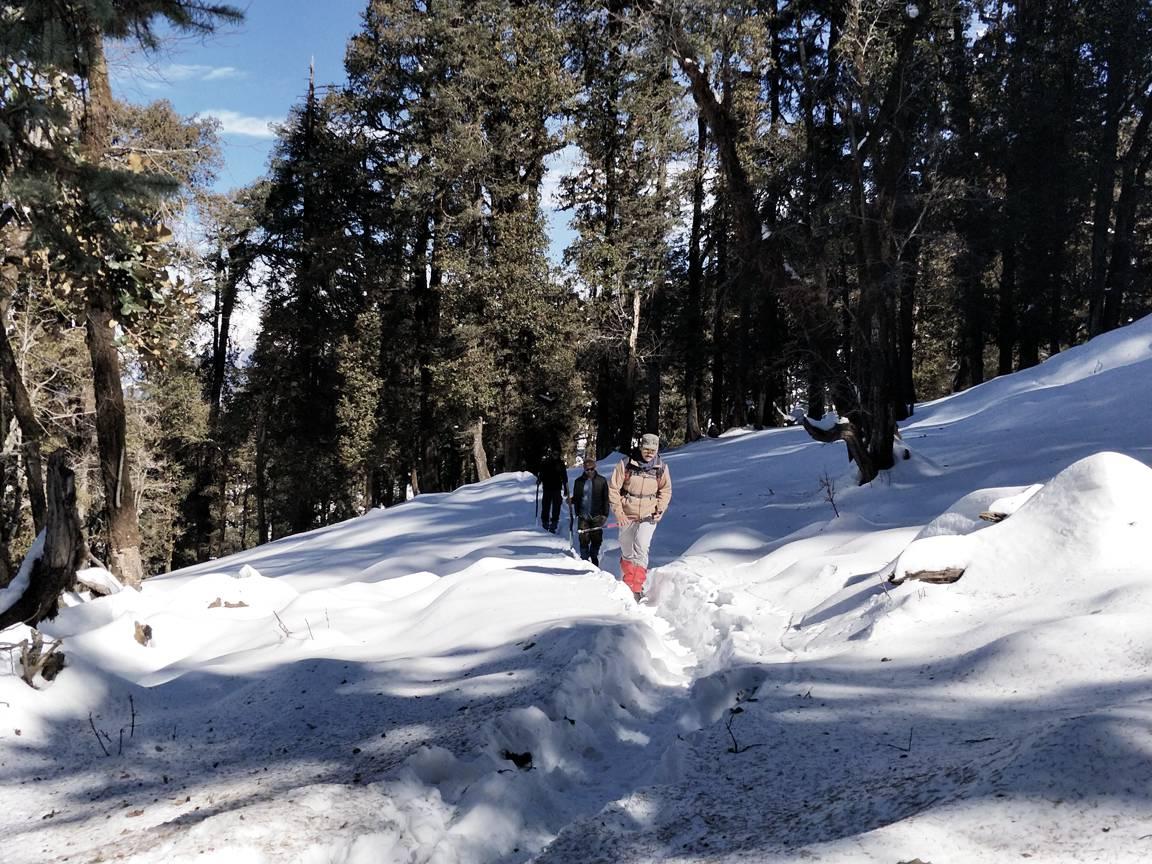 trekkers walking over single trail on kedarkantha