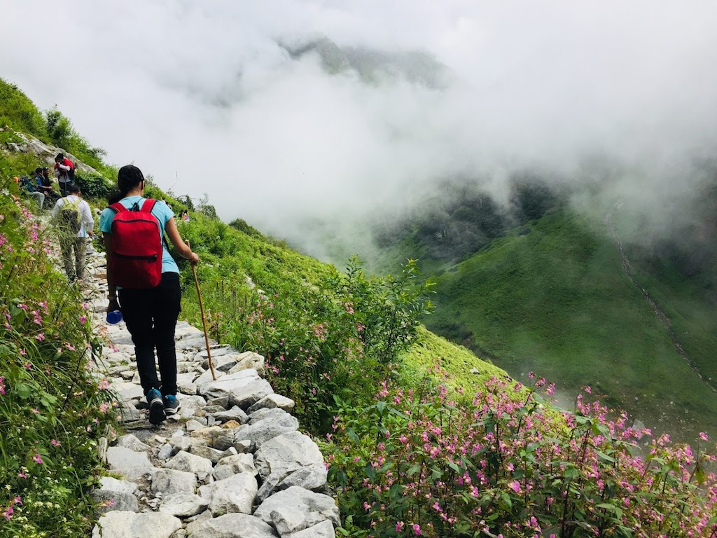 Trekkers walking on trail enroute valley of flowers in monsoon season